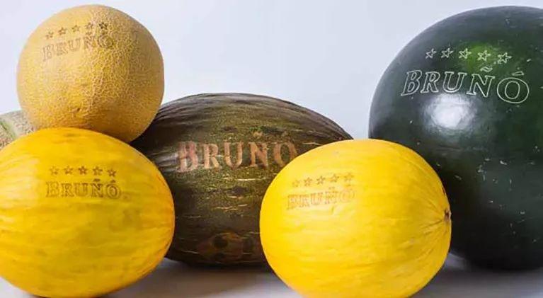 二氧化碳激光打标机在水果上的应用